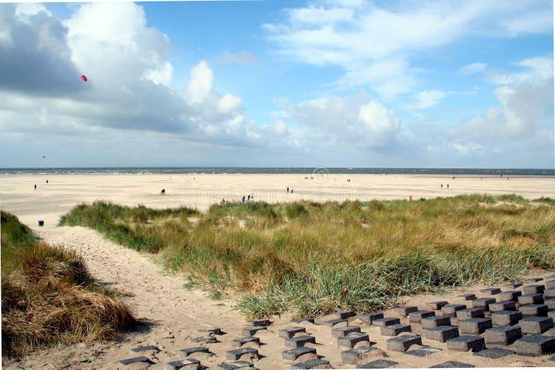 strand och dyn i Texel arkivfoton