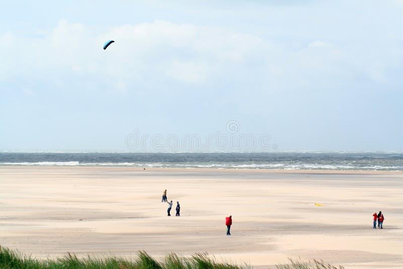 strand och dyn i Texel arkivbilder