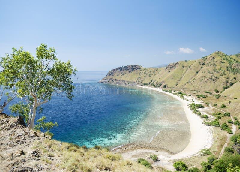 Strand och kust nära dili i East Timor royaltyfri fotografi
