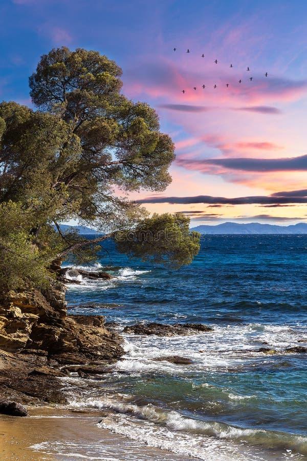 Strand och liten vik av `-azuren för skjul D in mot Cavalaire royaltyfria foton