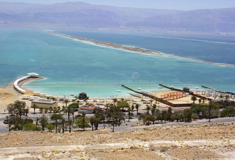 Strand op het Dode Overzees, Israël stock foto's