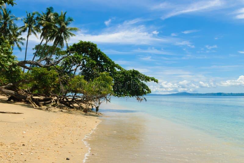 Strand på den Siladen ön arkivfoto