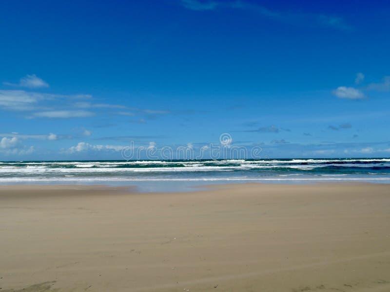 Strand på Fraser Island, Australien royaltyfria bilder