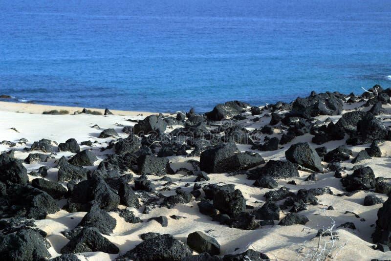 Strand på Fuertaventura arkivbilder