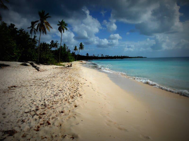 Strand på La Romana arkivbild