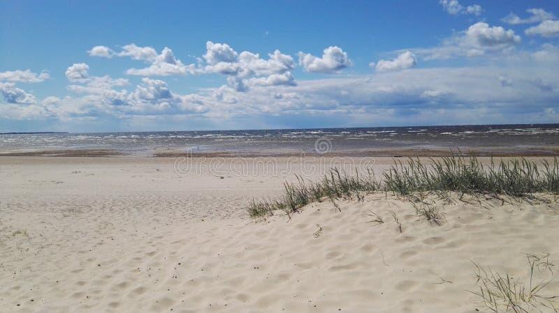 Strand på Peipsi sjön royaltyfria foton