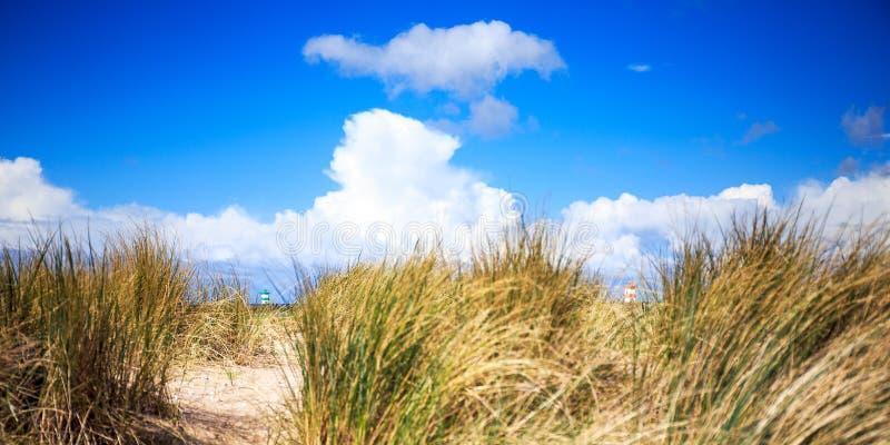 Strand på Scheveningen, Nederländerna royaltyfria bilder