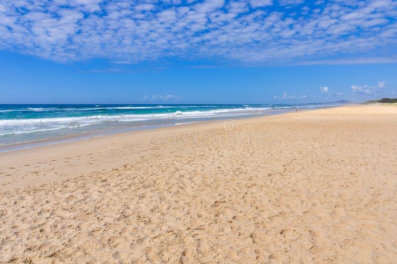 Strand på solskenkusten, Australien royaltyfri fotografi