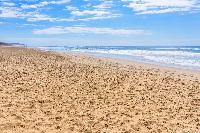 Strand på solskenkusten, Australien royaltyfria foton