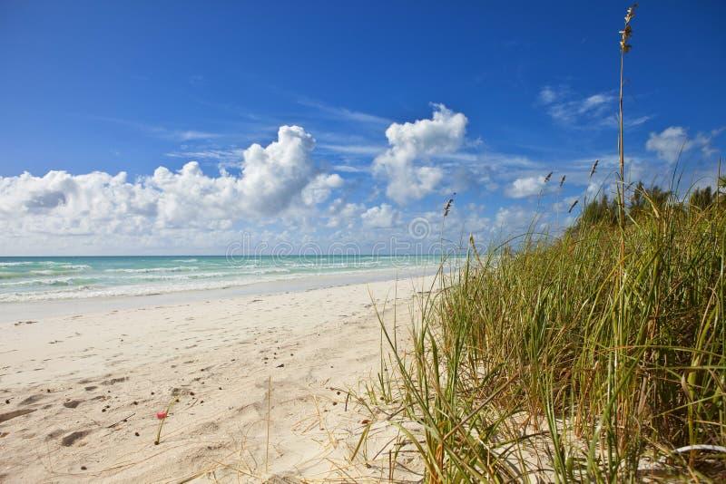Strand på storslagen bahama arkivfoto