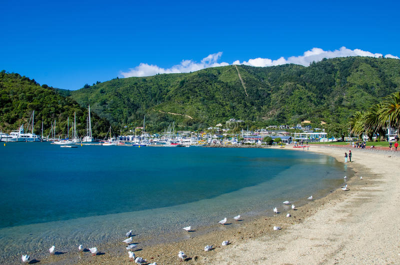 Strand in Picton, zuideneiland van Nieuw Zeeland royalty-vrije stock afbeelding