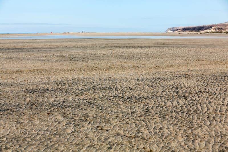 Strand Playa de Sotavento, royaltyfri foto