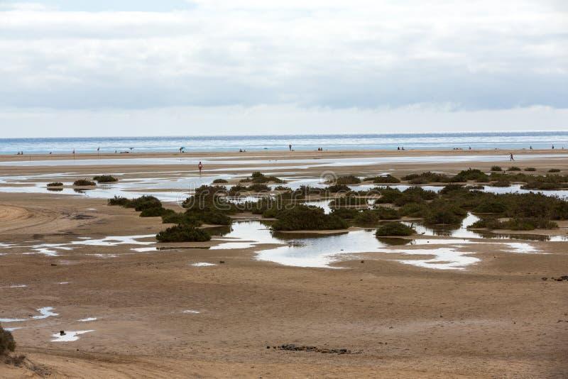 Strand Playa de Sotavento, arkivbilder