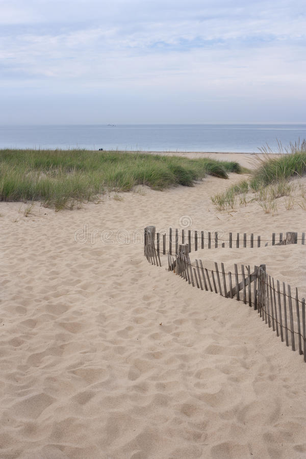 Strand in Provincetown, doctorandus in de letteren stock afbeelding