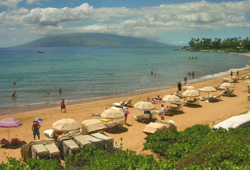 Strand-Regenschirme, Maui stockfotos