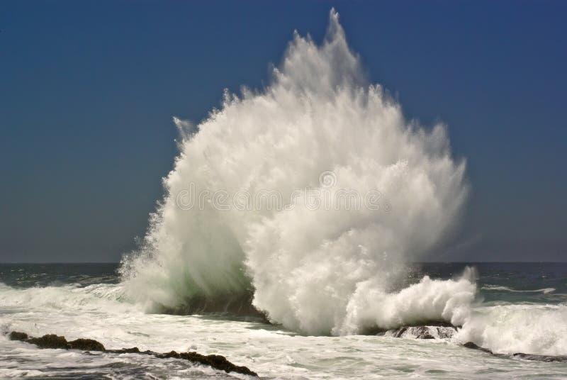 strand som bryter havwaven royaltyfria bilder
