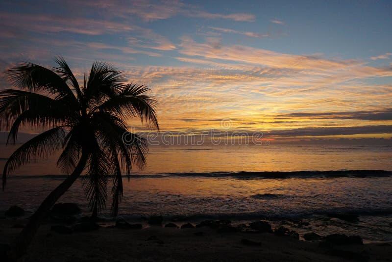 Strand-Sonnenaufgang lizenzfreie stockbilder