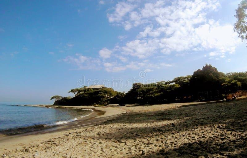 Strand sovande i morgonen fotografering för bildbyråer