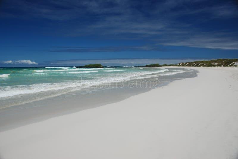 strand Stillahavs- galapagos royaltyfri foto