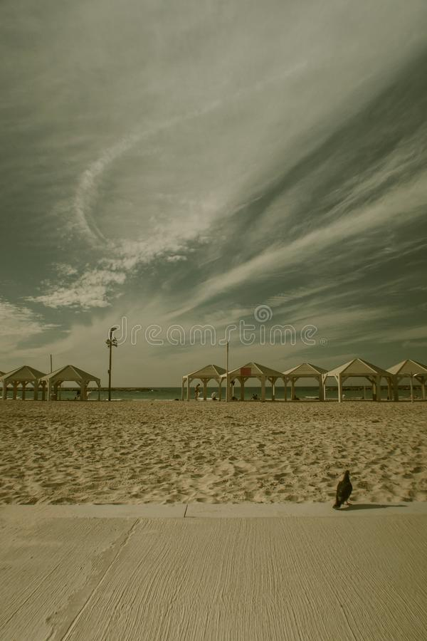 Strand in Tel Aviv in Israel lizenzfreies stockfoto