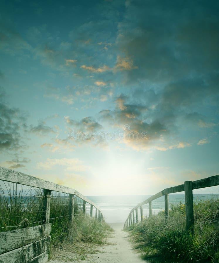 strand till walkwayen royaltyfria bilder