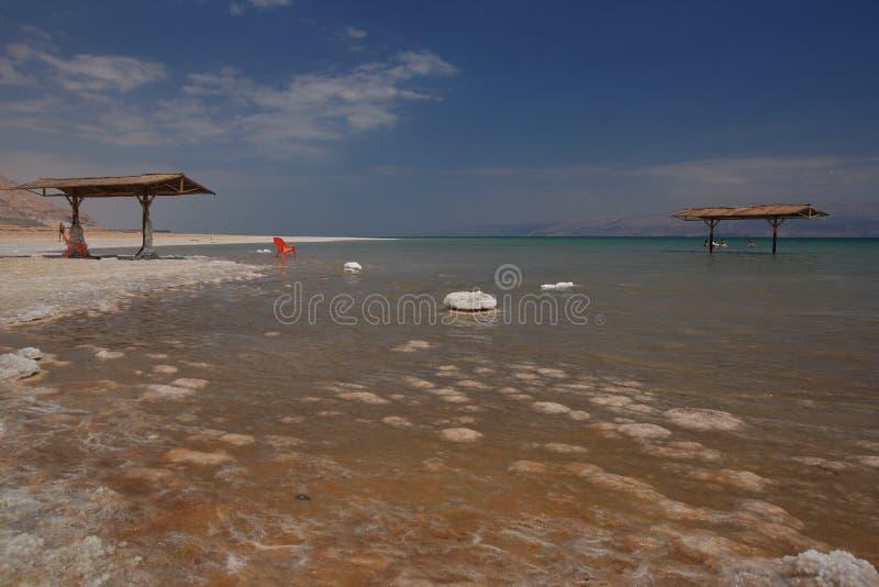 Strand, Totes Meer lizenzfreie stockbilder