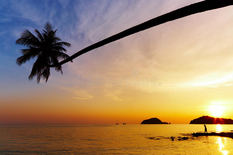 strand tropiska thailand arkivfoto