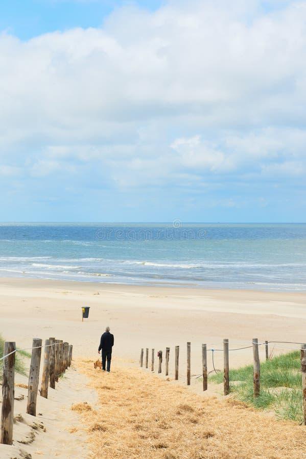 Strand und Dünen auf Holländern Texel lizenzfreie stockfotos