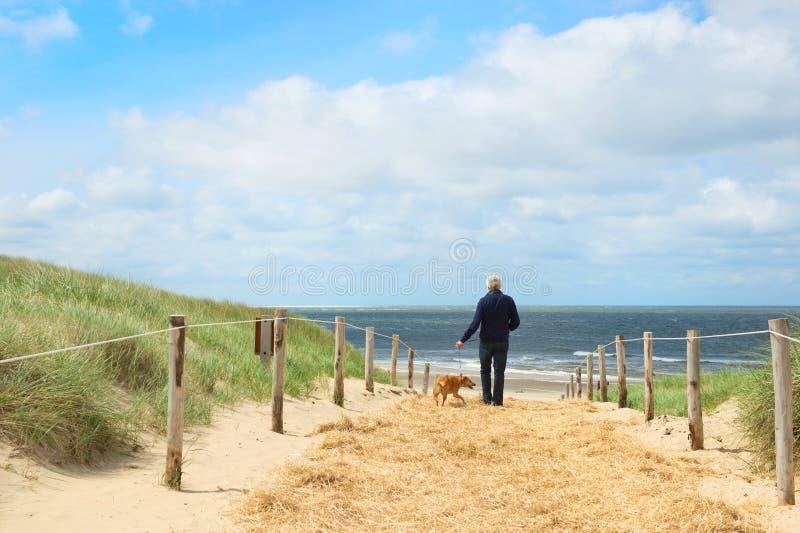 Strand und Dünen auf Holländern Texel lizenzfreies stockfoto