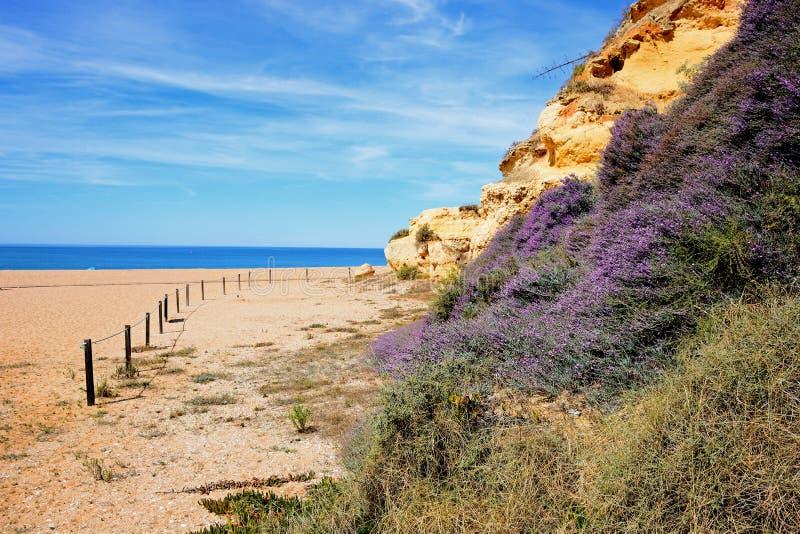 Strand und Klippen, Albufeira lizenzfreie stockfotos