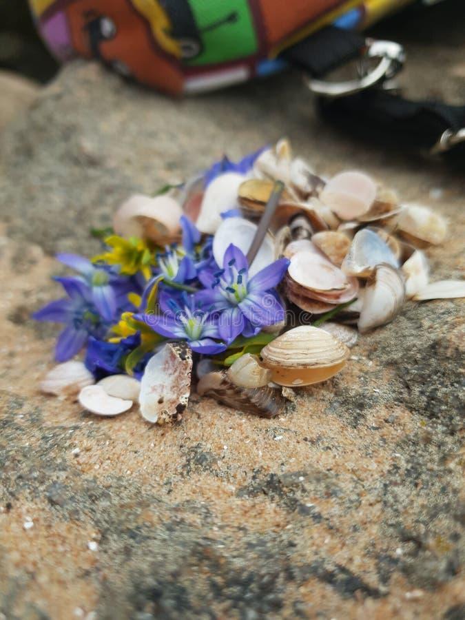 Strand van de overzeese de bloem van het het waterweer landschapsaard royalty-vrije stock afbeeldingen