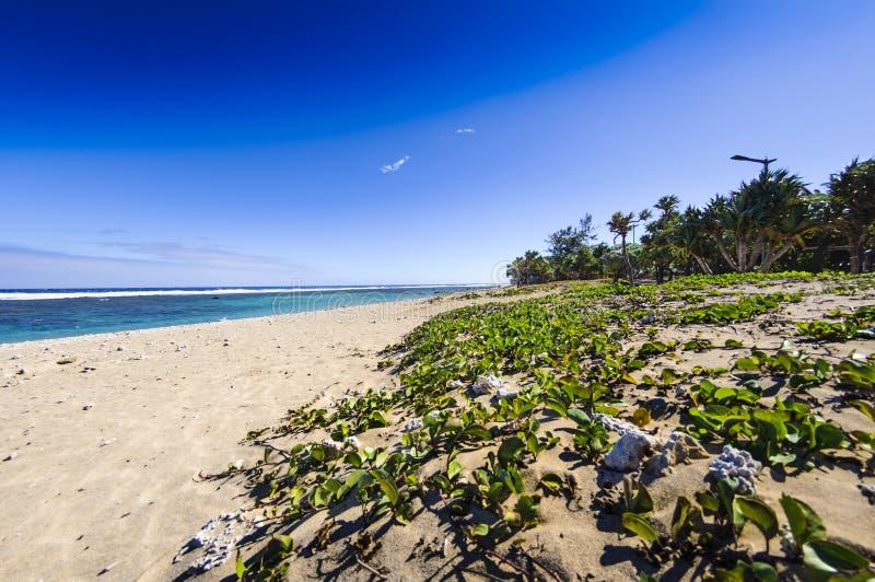 Strand van Saint Pierre, Ile DE La Reunion stock fotografie