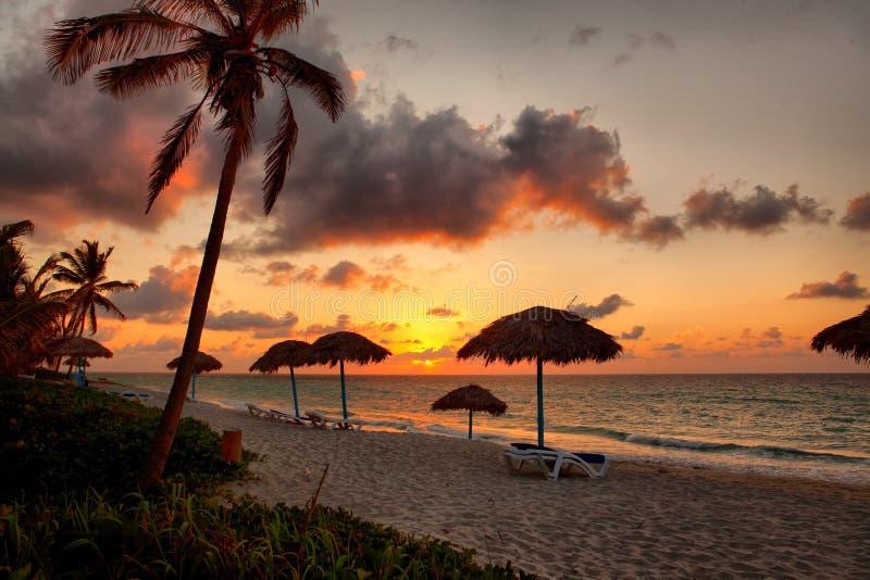 Strand, Varadero, Cuba stock foto's