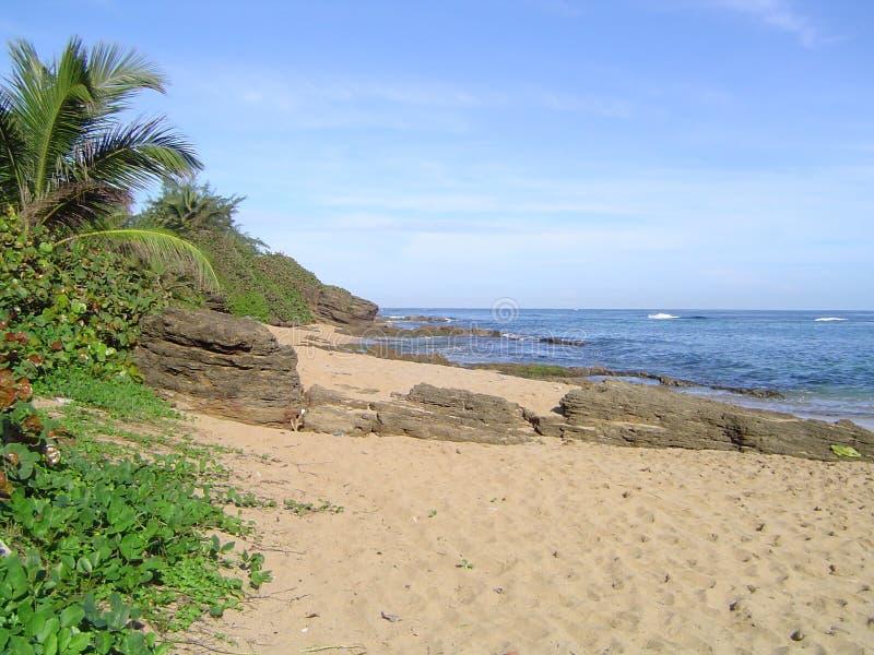 Strand von Puerto Rico Piñones lizenzfreies stockbild