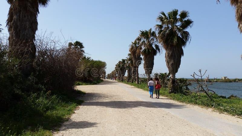 Strand walkroad mening in Israël stock foto