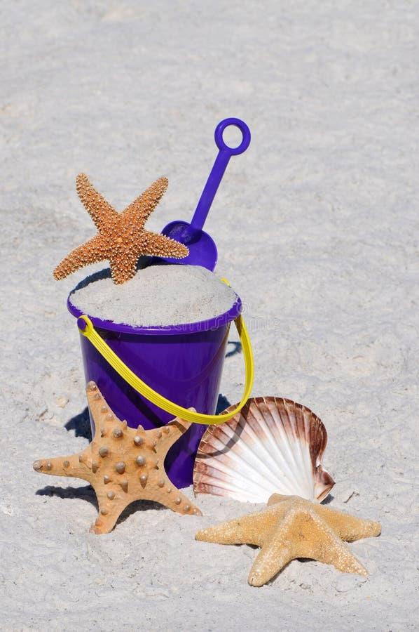 Strand-Wanne mit Starfish-und Seeshell lizenzfreie stockfotos