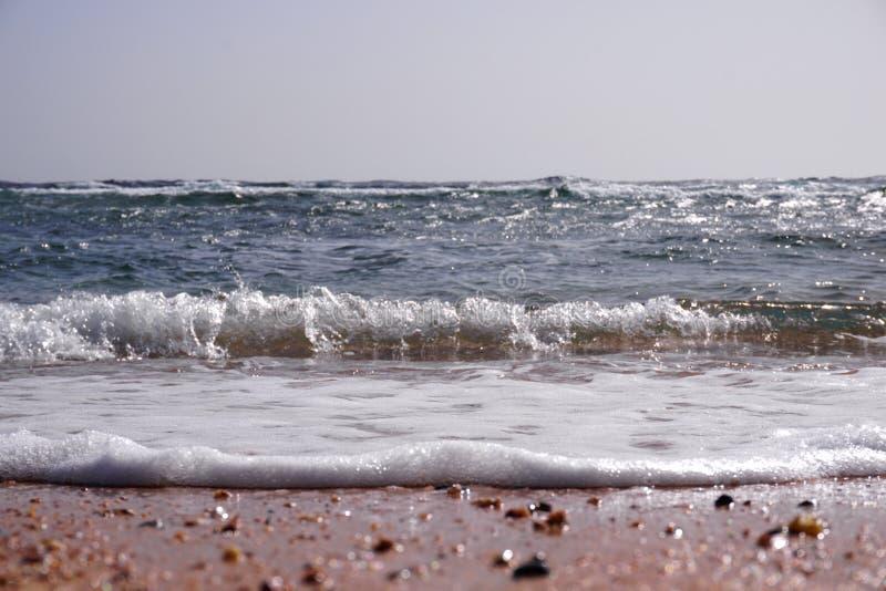 Strand in zonsondergangtijd, het zachte effect van de schuine standverschuiving stock fotografie