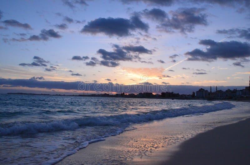 strandaftonen g?mma i handflatan havsskuggatrees royaltyfri bild
