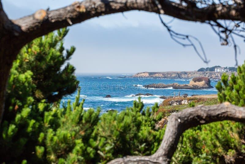 Strandansicht gestaltet durch Baumaste lizenzfreie stockfotos