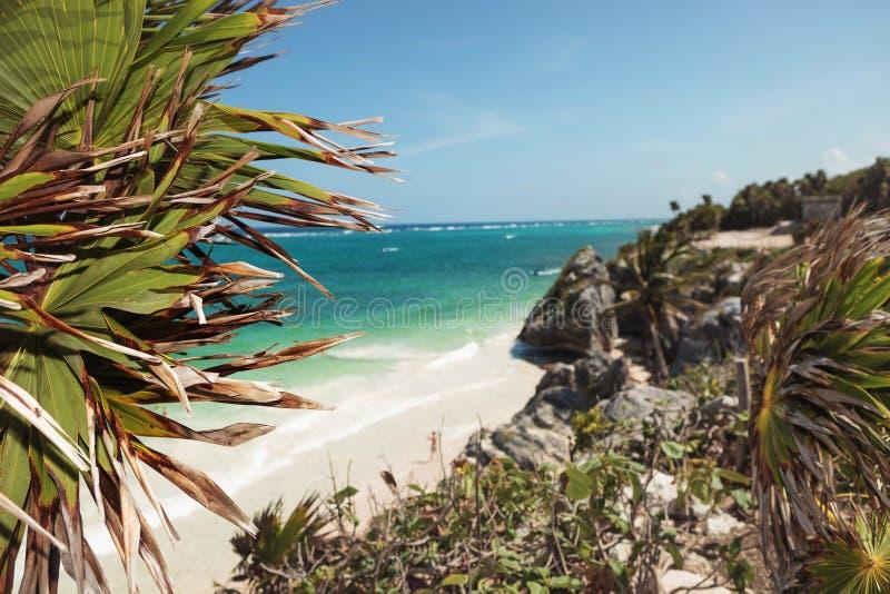 Strandansicht von Tulum lizenzfreies stockfoto