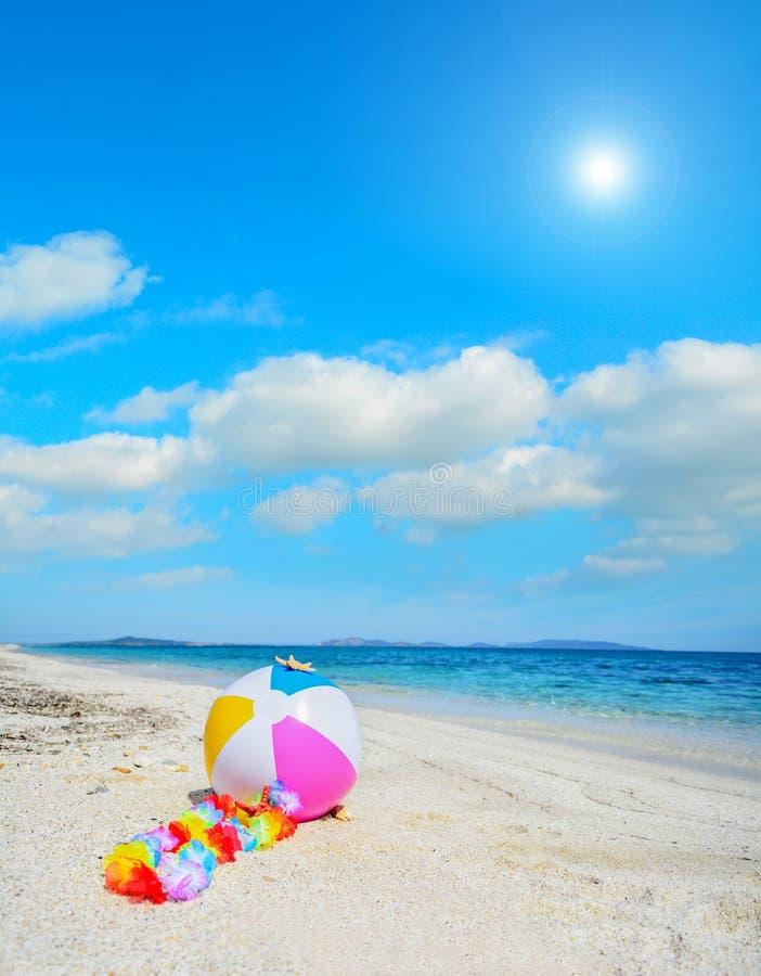 Download Strandbal Met Hawaiiaanse Halsband Stock Foto - Afbeelding bestaande uit zand, recreatief: 54088456