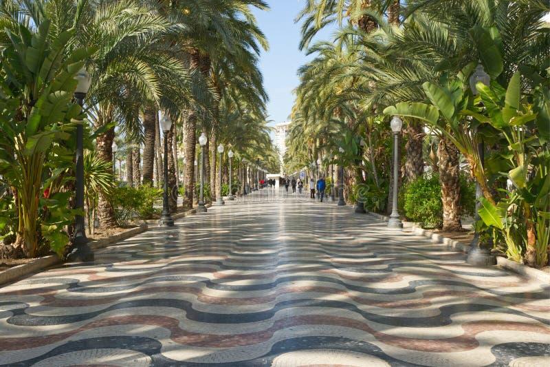 Strandboulevardpromenade in Alicante, Spanje royalty-vrije stock afbeelding