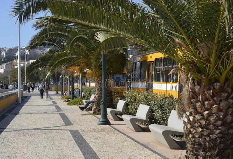 Strandboulevardpromenade in Funchal, Madera, Portugal royalty-vrije stock foto's