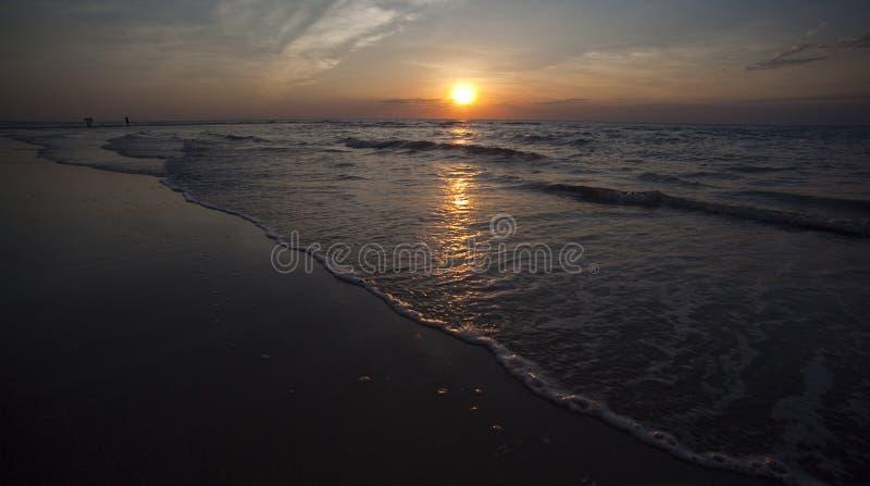 strandcasuarinadarwin solnedgång arkivfoto