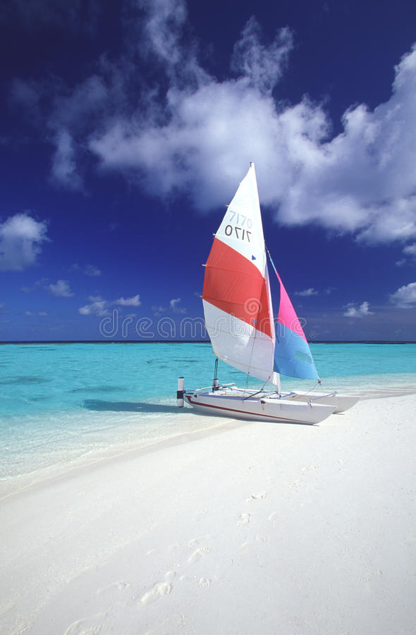 strandcatamaran tropiska maldives royaltyfri fotografi