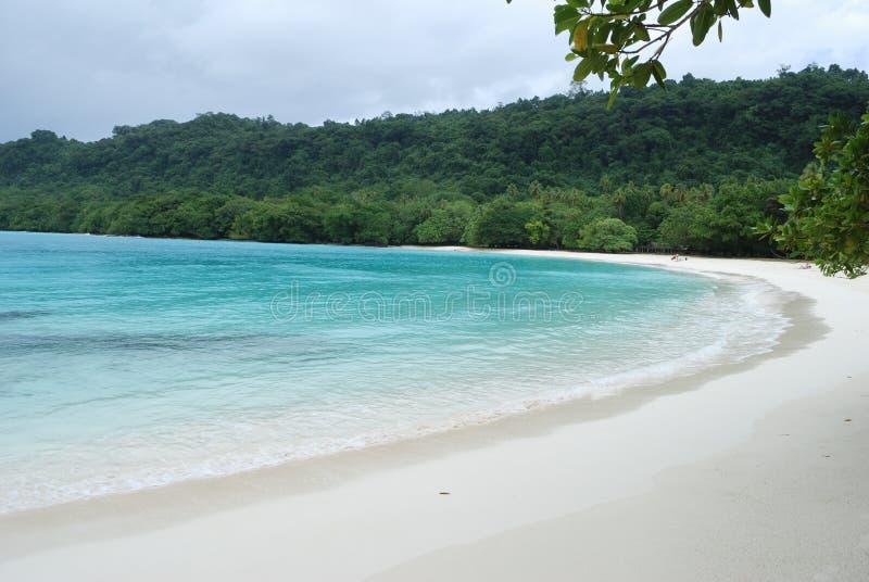 strandchampagne arkivfoton