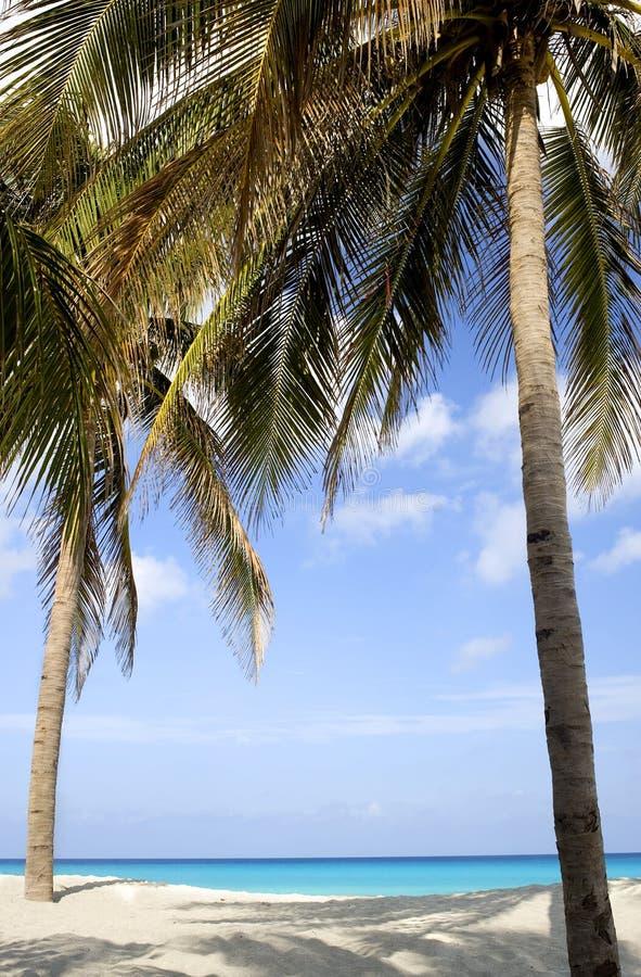 strandcuba plats varadero royaltyfri bild
