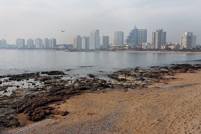 stranddel este punta uruguay arkivfoto