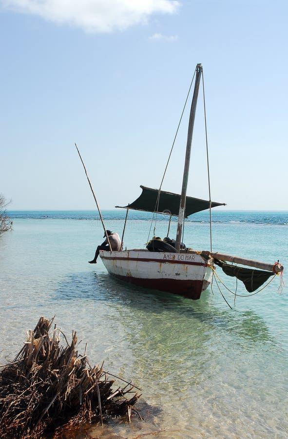stranddhow av fotografering för bildbyråer