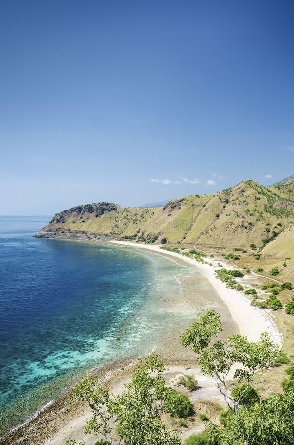 stranddili östlig leste nära timor royaltyfria bilder